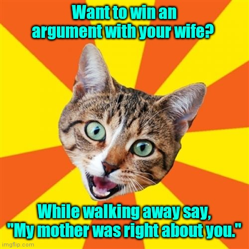 "Dare you to try it. |  Want to win an argument with your wife? While walking away say, ""My mother was right about you."" 