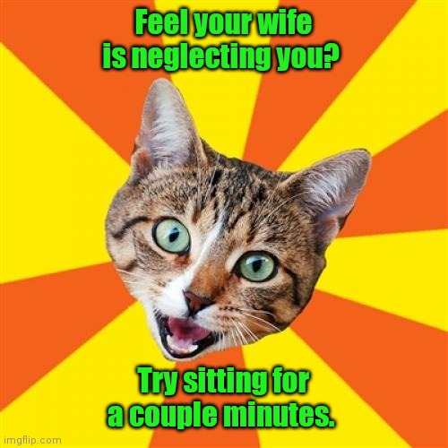 My Dad said this. |  Feel your wife is neglecting you? Try sitting for a couple minutes. | image tagged in memes,bad advice cat,sortoffunny | made w/ Imgflip meme maker
