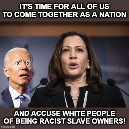 What legitimacy do the democrats have to rule this country if they believe most people are racist?! |  IT'S TIME FOR ALL OF US TO COME TOGETHER AS A NATION; X; X; AND ACCUSE WHITE PEOPLE OF BEING RACIST SLAVE OWNERS! | image tagged in memes,stupid liberals,joe biden,kamala harris,racism,election 2020 | made w/ Imgflip meme maker