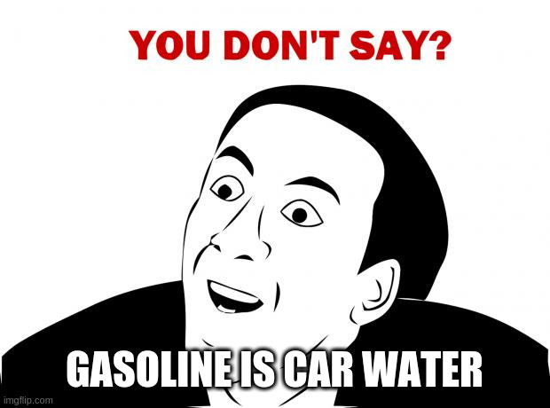 You Don't Say Meme | GASOLINE IS CAR WATER | image tagged in memes,you don't say | made w/ Imgflip meme maker