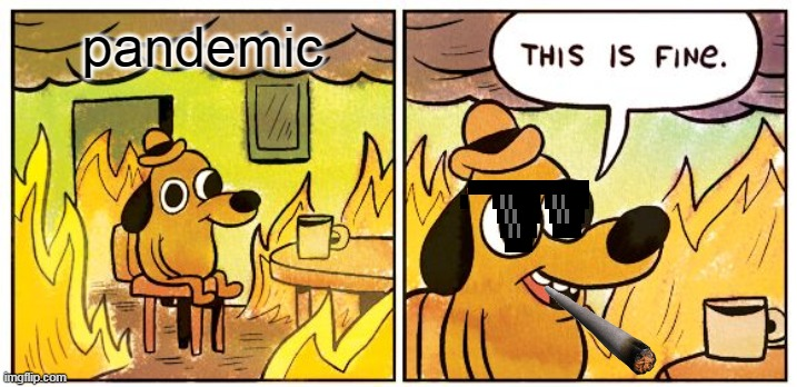 This is fine (pandemic) |  pandemic | image tagged in memes,this is fine,pandemic,covid-19,not problem,omg | made w/ Imgflip meme maker
