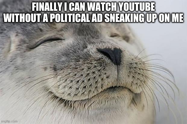 no more politicians |  FINALLY I CAN WATCH YOUTUBE WITHOUT A POLITICAL AD SNEAKING UP ON ME | image tagged in memes,satisfied seal | made w/ Imgflip meme maker