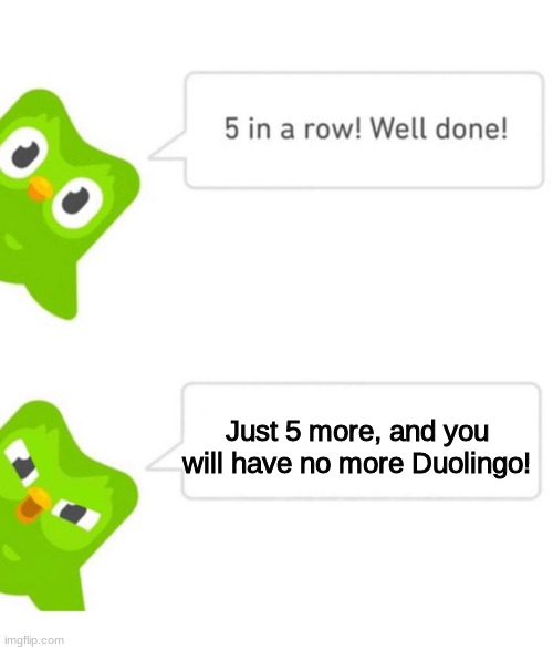 Duolingo 5 in a row | Just 5 more, and you will have no more Duolingo! | image tagged in duolingo 5 in a row | made w/ Imgflip meme maker