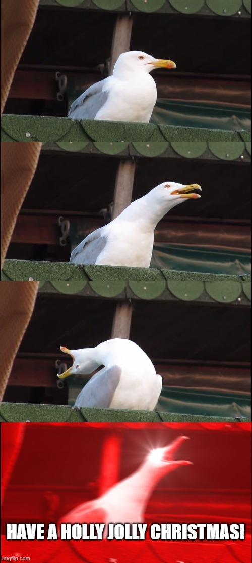 Inhaling Seagull Meme | HAVE A HOLLY JOLLY CHRISTMAS! | image tagged in memes,inhaling seagull | made w/ Imgflip meme maker