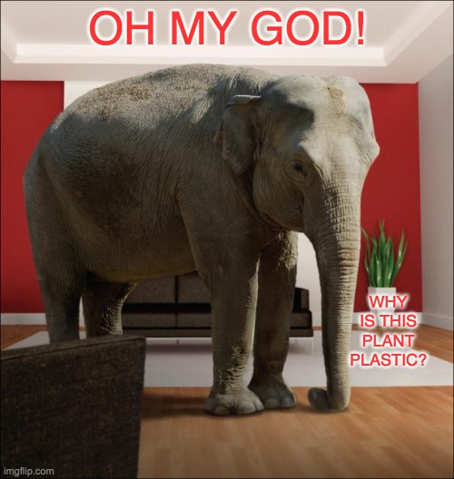 The real Elephant in the room |  OH MY GOD! WHY IS THIS PLANT PLASTIC? | image tagged in elephant in the room,decorating,choices | made w/ Imgflip meme maker