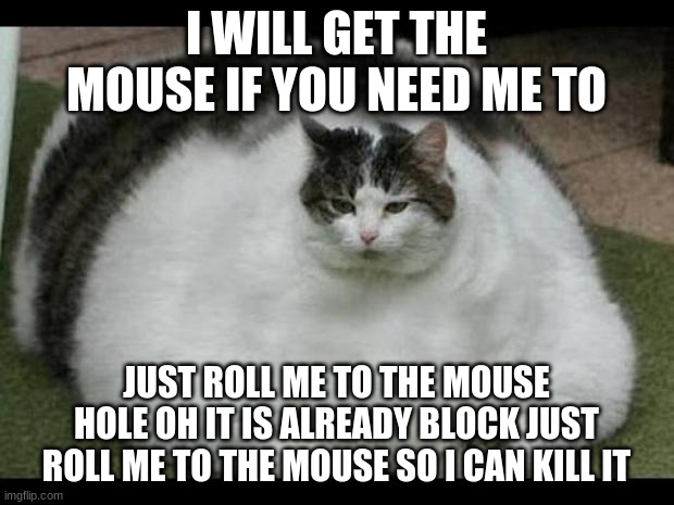 fat cat 2 |  I WILL GET THE MOUSE IF YOU NEED ME TO; JUST ROLL ME TO THE MOUSE HOLE OH IT IS ALREADY BLOCK JUST ROLL ME TO THE MOUSE SO I CAN KILL IT | image tagged in fat cat 2 | made w/ Imgflip meme maker
