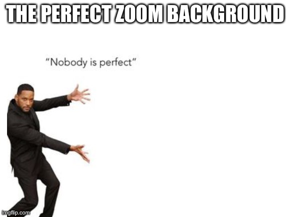 THE PERFECT ZOOM BACKGROUND | image tagged in zoom,nobody is perfect,funny background | made w/ Imgflip meme maker