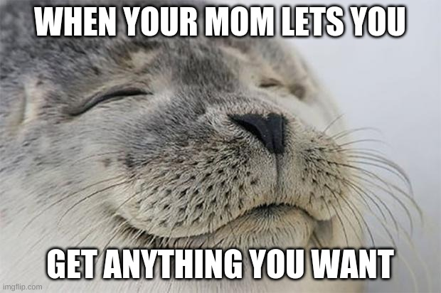 Satisfied Seal |  WHEN YOUR MOM LETS YOU; GET ANYTHING YOU WANT | image tagged in memes,satisfied seal | made w/ Imgflip meme maker