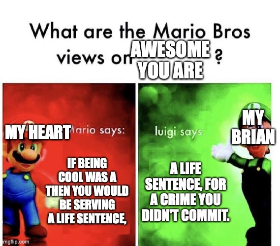 Just I am sad. |  AWESOME YOU ARE; MY BRIAN; MY HEART; IF BEING COOL WAS A THEN YOU WOULD BE SERVING A LIFE SENTENCE, A LIFE SENTENCE, FOR A CRIME YOU DIDN'T COMMIT. | image tagged in mario bros views | made w/ Imgflip meme maker