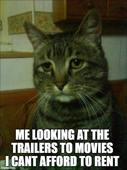 Depressed Cat |  ME LOOKING AT THE TRAILERS TO MOVIES I CANT AFFORD TO RENT | image tagged in memes,depressed cat | made w/ Imgflip meme maker