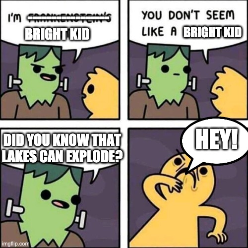 What the- |  -----------------; BRIGHT KID; BRIGHT KID; HEY! DID YOU KNOW THAT LAKES CAN EXPLODE? | image tagged in frankenstein's monster | made w/ Imgflip meme maker