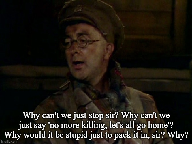 Baldrick |  Why can't we just stop sir? Why can't we just say 'no more killing, let's all go home'? Why would it be stupid just to pack it in, sir? Why? | image tagged in world war 1,anti-war,world peace | made w/ Imgflip meme maker