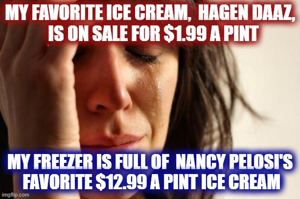 First World Problems |  MY FAVORITE ICE CREAM,  HAGEN DAAZ,   IS ON SALE FOR $1.99 A PINT; MY FREEZER IS FULL OF  NANCY PELOSI'S  FAVORITE $12.99 A PINT ICE CREAM | image tagged in memes,first world problems,ice cream,nancy pelosi | made w/ Imgflip meme maker