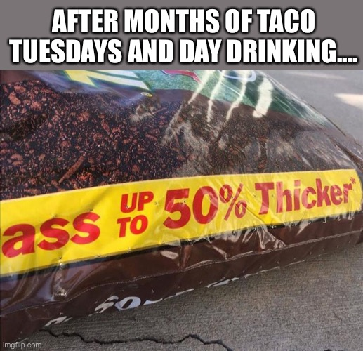 At least it's not just me. |  AFTER MONTHS OF TACO TUESDAYS AND DAY DRINKING.... | image tagged in fertilizer,grass,tacos,taco tuesday,fat,day drinking | made w/ Imgflip meme maker