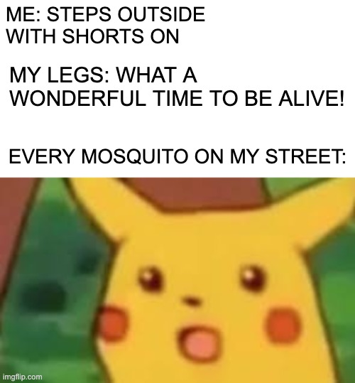Real lief |  ME: STEPS OUTSIDE  WITH SHORTS ON; MY LEGS: WHAT A WONDERFUL TIME TO BE ALIVE! EVERY MOSQUITO ON MY STREET: | image tagged in funny,true,accurate,my life,shocked | made w/ Imgflip meme maker