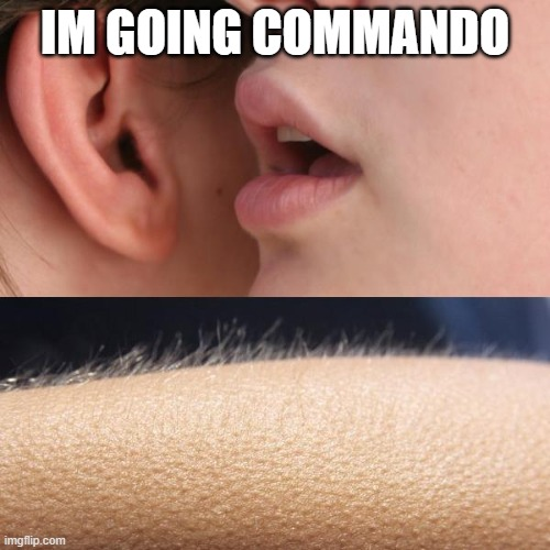 Commando |  IM GOING COMMANDO | image tagged in whisper and goosebumps | made w/ Imgflip meme maker