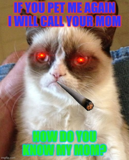 Grumpy Cat |  IF YOU PET ME AGAIN I WILL CALL YOUR MOM; HOW DO YOU KNOW MY MOM? | image tagged in memes,grumpy cat | made w/ Imgflip meme maker