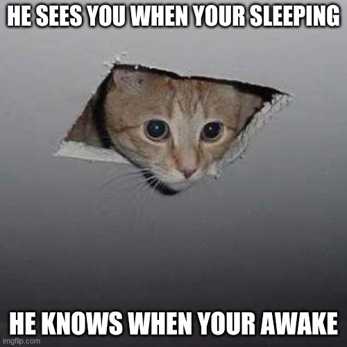 Ceiling Cat |  HE SEES YOU WHEN YOUR SLEEPING; HE KNOWS WHEN YOUR AWAKE | image tagged in memes,ceiling cat | made w/ Imgflip meme maker