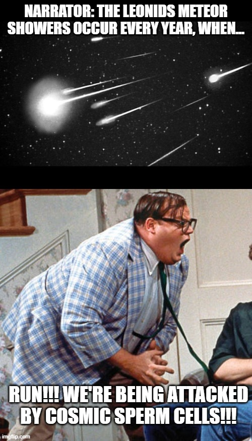 RUN!!! |  NARRATOR: THE LEONIDS METEOR SHOWERS OCCUR EVERY YEAR, WHEN... RUN!!! WE'RE BEING ATTACKED BY COSMIC SPERM CELLS!!! | image tagged in chris farley for the love of god,funny,funny memes | made w/ Imgflip meme maker