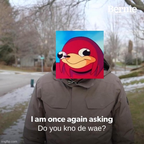 Bernie I Am Once Again Asking For Your Support Meme |  Do you kno de wae? | image tagged in memes,bernie i am once again asking for your support | made w/ Imgflip meme maker