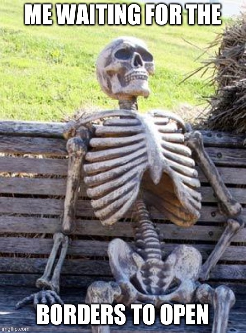Cough cough ? |  ME WAITING FOR THE; BORDERS TO OPEN | image tagged in memes,waiting skeleton | made w/ Imgflip meme maker