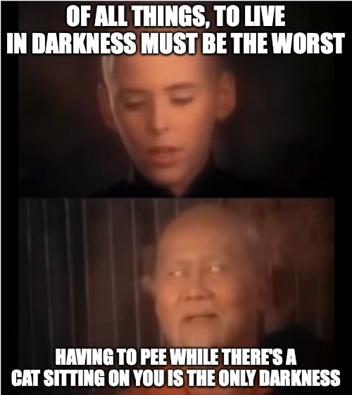 Meoof |  OF ALL THINGS, TO LIVE IN DARKNESS MUST BE THE WORST; HAVING TO PEE WHILE THERE'S A CAT SITTING ON YOU IS THE ONLY DARKNESS | image tagged in x is the only darkness,memes,cat,cats,cat meme,cat memes | made w/ Imgflip meme maker