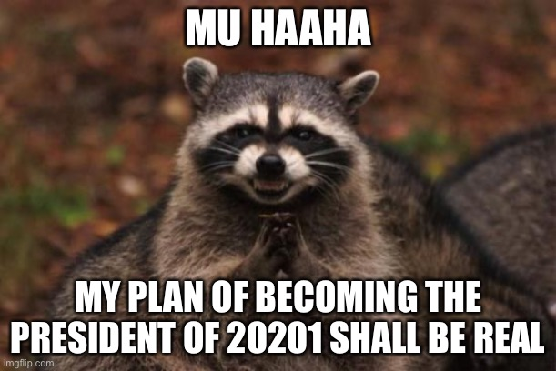 Evil racoon |  MU HAAHA; MY PLAN OF BECOMING THE PRESIDENT OF 20201 SHALL BE REAL | image tagged in evil racoon | made w/ Imgflip meme maker