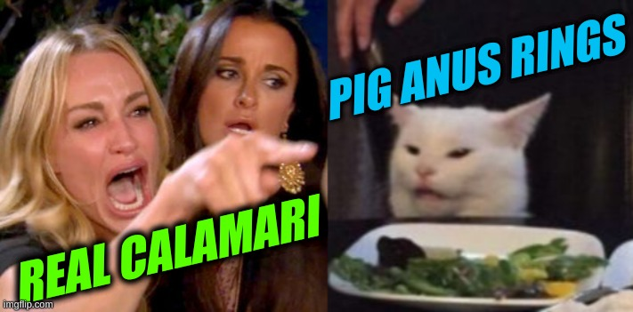 woman yelling at cat cropped |  PIG ANUS RINGS; REAL CALAMARI | image tagged in woman yelling at cat cropped | made w/ Imgflip meme maker