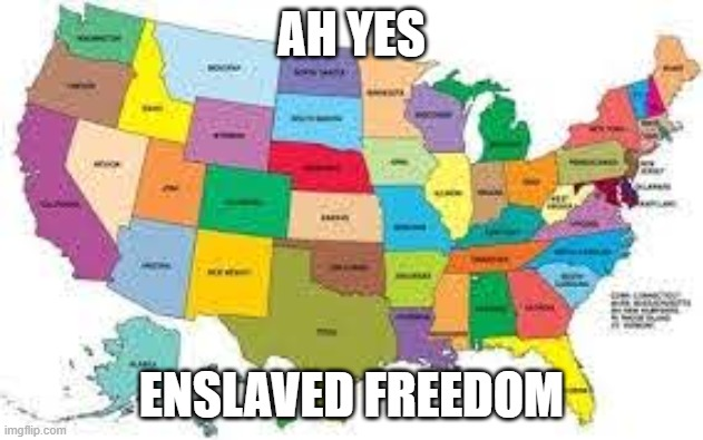 truth |  AH YES; ENSLAVED FREEDOM | image tagged in ah yes enslaved | made w/ Imgflip meme maker