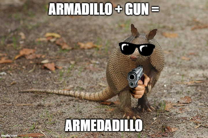 Armed-adillo |  ARMADILLO + GUN =; ARMEDADILLO | image tagged in animal,pun,gangster | made w/ Imgflip meme maker