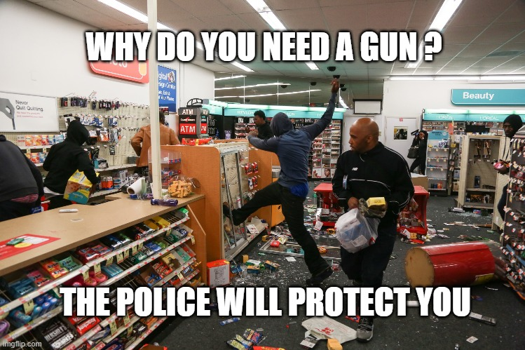 Baltimore 2020 |  WHY DO YOU NEED A GUN ? THE POLICE WILL PROTECT YOU | image tagged in looting,crime,riots | made w/ Imgflip meme maker