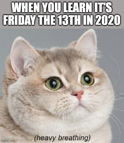 Watch your back today peeps... |  WHEN YOU LEARN IT'S FRIDAY THE 13TH IN 2020 | image tagged in memes,heavy breathing cat | made w/ Imgflip meme maker