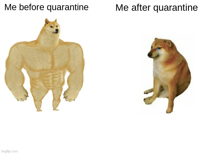 Buff Doge vs. Cheems Meme |  Me before quarantine; Me after quarantine | image tagged in memes,buff doge vs cheems | made w/ Imgflip meme maker