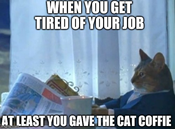 I Should Buy A Boat Cat |  WHEN YOU GET TIRED OF YOUR JOB; AT LEAST YOU GAVE THE CAT COFFIE | image tagged in memes,i should buy a boat cat | made w/ Imgflip meme maker
