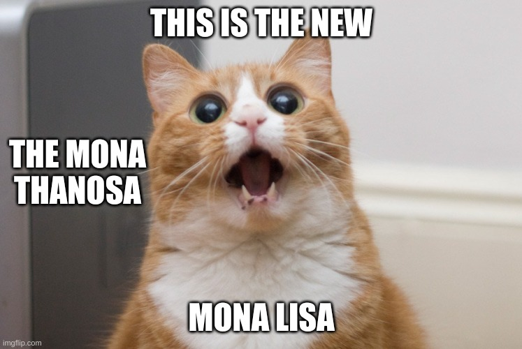 Amazed cat | THIS IS THE NEW MONA LISA THE MONA THANOSA | image tagged in amazed cat | made w/ Imgflip meme maker