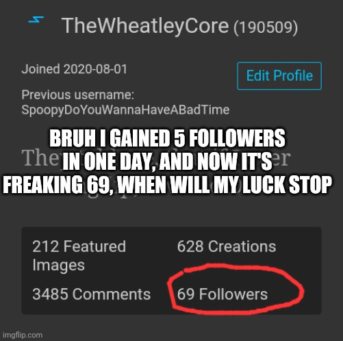 bRuH hOw ThO |  BRUH I GAINED 5 FOLLOWERS IN ONE DAY, AND NOW IT'S FREAKING 69, WHEN WILL MY LUCK STOP | image tagged in 69 | made w/ Imgflip meme maker
