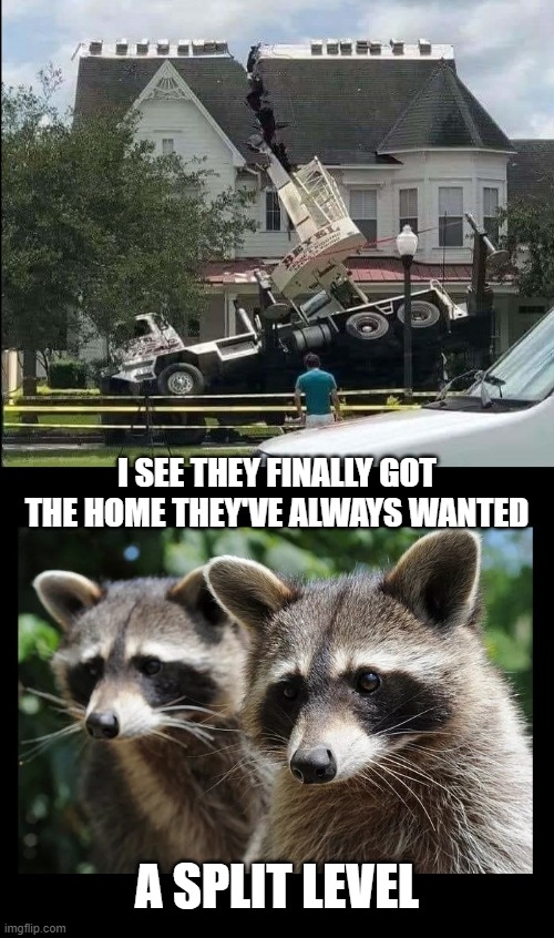 Having a bad day at work? |  I SEE THEY FINALLY GOT THE HOME THEY'VE ALWAYS WANTED; A SPLIT LEVEL | image tagged in real estate,bad day at work,raccoon,split level homes | made w/ Imgflip meme maker
