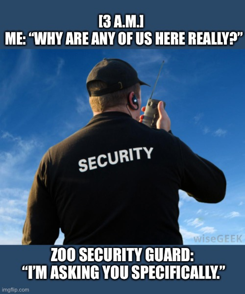 "Just answer the question |  [3 A.M.]   ME: ""WHY ARE ANY OF US HERE REALLY?""; ZOO SECURITY GUARD:  ""I'M ASKING YOU SPECIFICALLY."" 