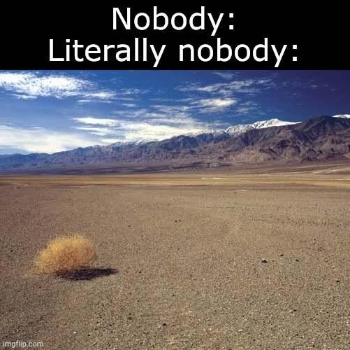 desert tumbleweed |  Nobody: Literally nobody: | image tagged in desert tumbleweed,nobody,nobody absolutely no one,funny memes,literal meme,funny | made w/ Imgflip meme maker