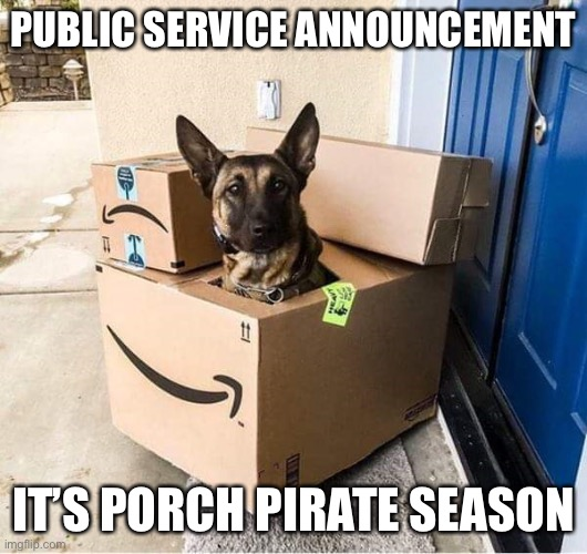 It was delivered this morning? |  PUBLIC SERVICE ANNOUNCEMENT; IT'S PORCH PIRATE SEASON | image tagged in funny memes | made w/ Imgflip meme maker