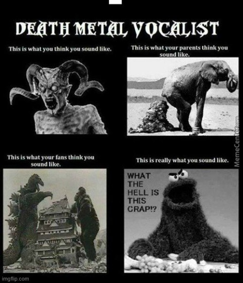 What you think you are | image tagged in what you think you are memes,metal mania memes | made w/ Imgflip meme maker