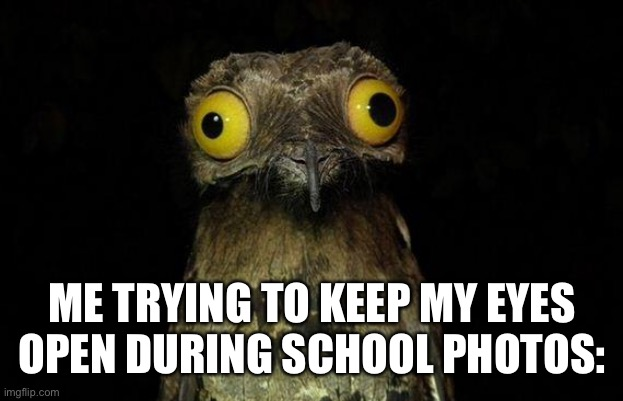 Weird Stuff I Do Potoo Meme |  ME TRYING TO KEEP MY EYES OPEN DURING SCHOOL PHOTOS: | image tagged in memes,weird stuff i do potoo | made w/ Imgflip meme maker