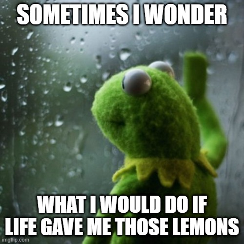 Squeeze them out and drip the juice into Life's eyes of course |  SOMETIMES I WONDER; WHAT I WOULD DO IF LIFE GAVE ME THOSE LEMONS | image tagged in sometimes i wonder,memes,when life gives you lemons,what would happen | made w/ Imgflip meme maker