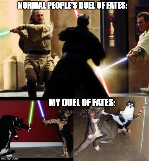 duel of fates |  NORMAL PEOPLE'S DUEL OF FATES:; MY DUEL OF FATES: | image tagged in star wars | made w/ Imgflip meme maker