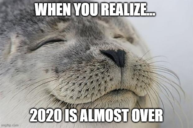 Satisfied Seal |  WHEN YOU REALIZE... 2020 IS ALMOST OVER | image tagged in memes,satisfied seal,2020 | made w/ Imgflip meme maker
