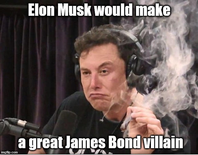 Bad guy, or Worst guy? |  Elon Musk would make; a great James Bond villain | image tagged in elon musk smoking a joint | made w/ Imgflip meme maker