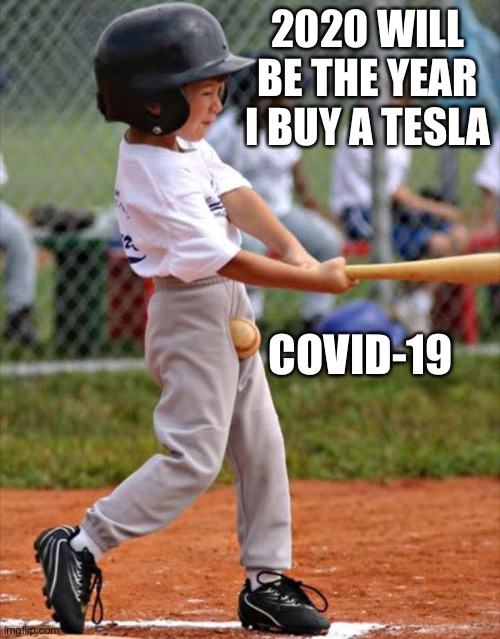 What a year! |  2020 WILL BE THE YEAR I BUY A TESLA; COVID-19 | image tagged in baseball,2020 sucks,covid-19,tesla,memes | made w/ Imgflip meme maker