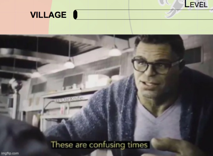 I am confused | image tagged in these are confusing times,village,io | made w/ Imgflip meme maker