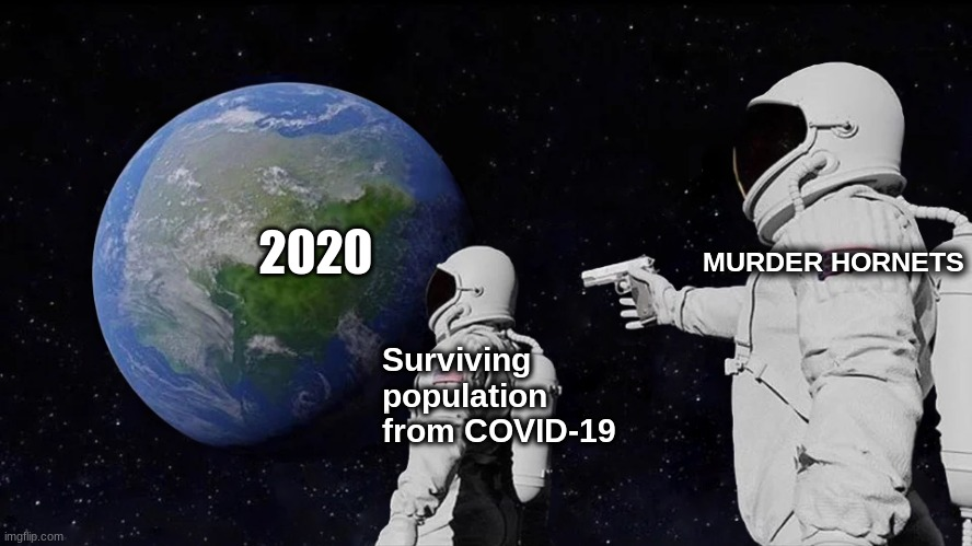 Always Has Been |  2020; MURDER HORNETS; Surviving population from COVID-19 | image tagged in memes,always has been | made w/ Imgflip meme maker