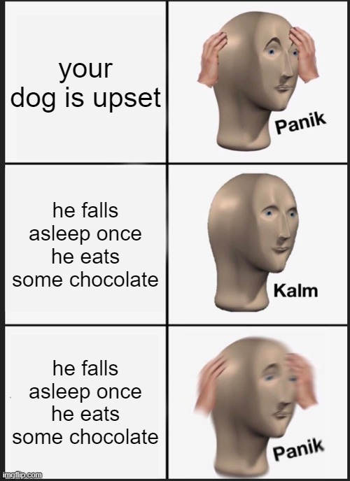 Panik Kalm Panik Meme |  your dog is upset; he falls asleep once he eats some chocolate; he falls asleep once he eats some chocolate | image tagged in memes,panik kalm panik | made w/ Imgflip meme maker